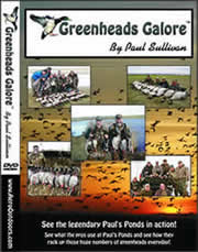 Greeenheads Galore DVD- See hunting up close and personal! Informative too.